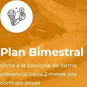 plan-bimestral-diagnostico-peces-manejo-piscicultura